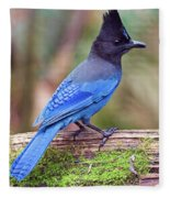 Steller's Jay IIi Fleece Blanket
