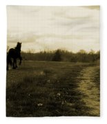 Stepping Out Fleece Blanket