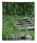 Steps In The Grass Fleece Blanket