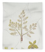 Sterculia Urens Fleece Blanket