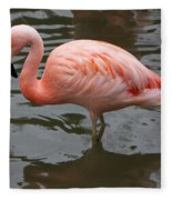 Stern Flamingo Fleece Blanket