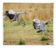 Stick The Landing Fleece Blanket
