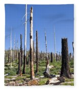 Sticks Fleece Blanket