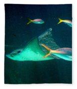Sting Ray Fleece Blanket