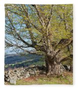 Stone Wall Spring Landscape Fleece Blanket
