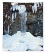 Stony Kill Falls In February #2 Fleece Blanket