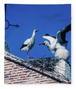 Storks Of Segovia Fleece Blanket