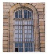 Strasbourg Window 08 Fleece Blanket