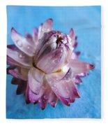 Straw Flower On Blue Fleece Blanket
