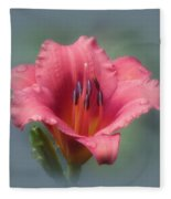 Strawberry And Blue - Daylily Fleece Blanket