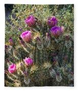 Strawberry Hedgehog Cactus  Fleece Blanket