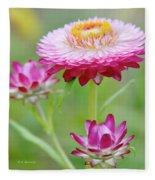 Strawflower Blossoms Fleece Blanket