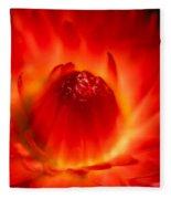 Strawflower Sombrero Fleece Blanket