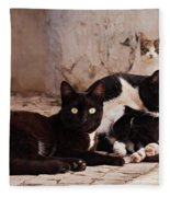 Street Cats - Portugal Fleece Blanket