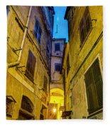 Street In Vernazza Fleece Blanket