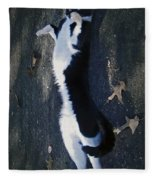 Stretchy Cat Fleece Blanket