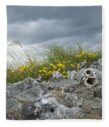 Striking Ruins Fleece Blanket