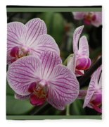 Striped Orchids With Border Fleece Blanket