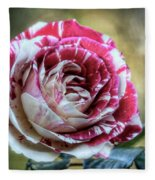 Striped Rose  Fleece Blanket