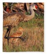 Strolling Sandhill Crane Family Fleece Blanket