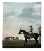 Stubbs: Gimcrack, 1765 Fleece Blanket