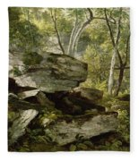 Study From Nature   Rocks And Trees Fleece Blanket