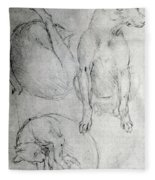 Study Of A Dog And A Cat Fleece Blanket