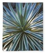Stunning Agave Plant Fleece Blanket