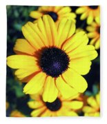 Stunning Black Eyed Susan  Fleece Blanket