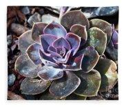 Succulent Plant Poetry Fleece Blanket