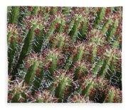 Succulent Series Vi Fleece Blanket