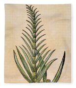 Sugar Cane, 1597 Fleece Blanket