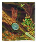 Sukkot-the Lulav Fleece Blanket
