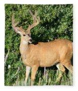 Summer Buck Fleece Blanket