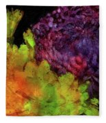 Summer Contrast Fleece Blanket