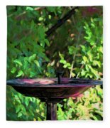 Summer Fountain Impasto Fleece Blanket