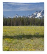 Summer In The Sawtooths Fleece Blanket