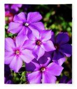 Summer Purple Phlox Fleece Blanket