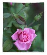 Summer Sweet Rose Fleece Blanket
