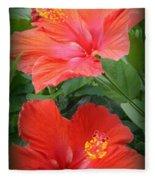 Summer Time Beauties - Hibiscus - Dora Sofia Caputo Fleece Blanket