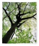 Summer Tree Fleece Blanket