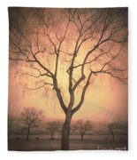 Summerland Light In Winter Fleece Blanket
