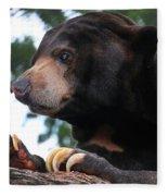 Sun Bear-7859 Fleece Blanket