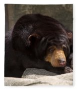 Sun Bear Fleece Blanket