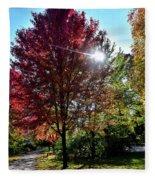 Sun Burst In Autumn Fleece Blanket