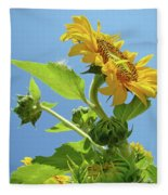 Sun Flower Artwork Sunflower 5 Giclee Art Prints Baslee Troutman Fleece Blanket