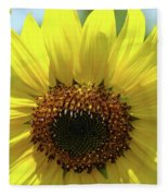 Sun Flower Glow Art Print Summer Sunflowers Baslee Troutman Fleece Blanket