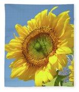 Sun Flowers Garden Art Prints Baslee Troutman Fleece Blanket