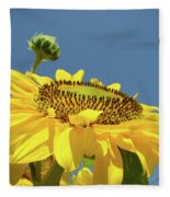 Sun Flowers Summer Sunny Day 8 Blue Skies Giclee Art Prints Baslee Troutman Fleece Blanket