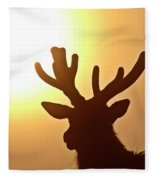 Sun Glaring Over A Bull Elk Fleece Blanket
